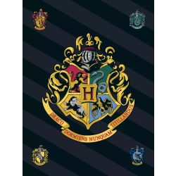 Harry Potter  takaró Csíkos Logo