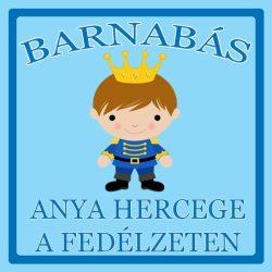 Névre szóló Baby on Board autómatrica - Anya hercege a fedélzeten