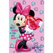 Minnie egér rózsaszín polár takaró
