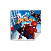 Pókember mágikus kéztörlő, arctörlő