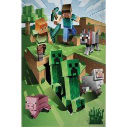 Minecraft zöld polár takaró